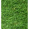 Grass Planting Service (Philippine Carpet Grass)